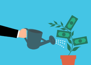 Money Cash Tree Watering Hand - mohamed_hassan / Pixabay